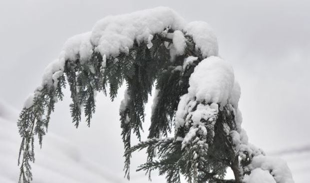 Itt a tél! 10 cm feletti hó, nagy mínuszok és jeges szél